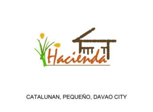 LFS 25 - Lots For Sale property in Davao City