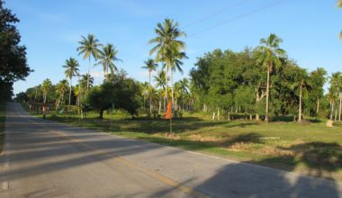 Samal Lot For Sale 59 - Lot for Sale property in Davao City