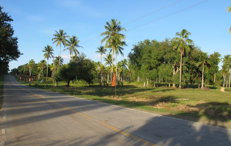 Samal Lot For Sale 59 property in Davao City