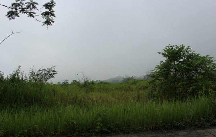 Davao Lot for Sale 9 - Lots For Sale property in Davao City