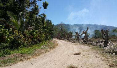 Samal Lot For Sale 8 property in Davao City