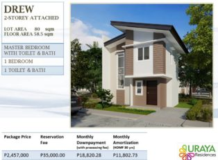 Davao House for Sale 245 - House For Sale property in Davao City