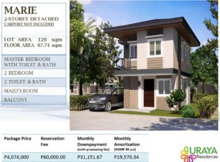 Davao House for Sale 407 - House For Sale property in Davao City