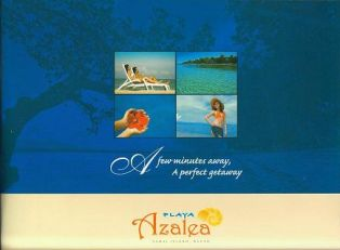 Samal Lot For Sale 1-Playa Azalea - Lot for Sale property in Davao City
