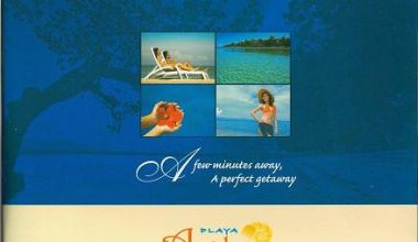 Samal Lot For Sale 1-Playa Azalea property in Davao City