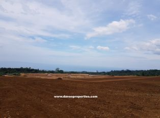 Davao Lot For Sale 2 - Davao property in Davao City