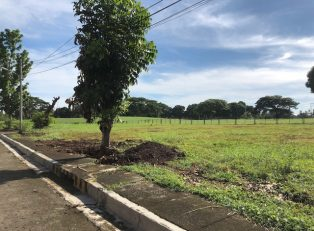 Davao Lot For Sale 5