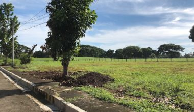 Davao Lot For Sale 5 - Davao property in Davao City