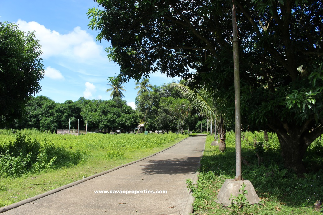 Davao Commercial Properties for Sale