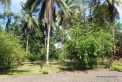 Davao House For Sale 1501 - House For Sale property in Davao City